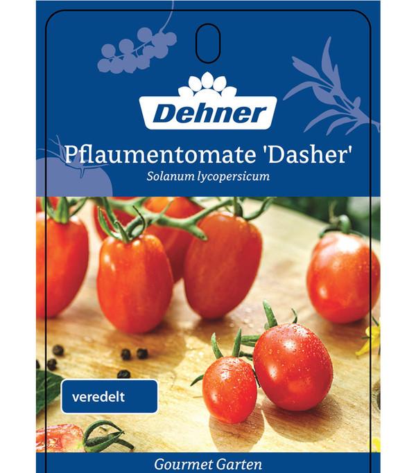 Dehner Gourmet Garten Datteltomate, veredelt