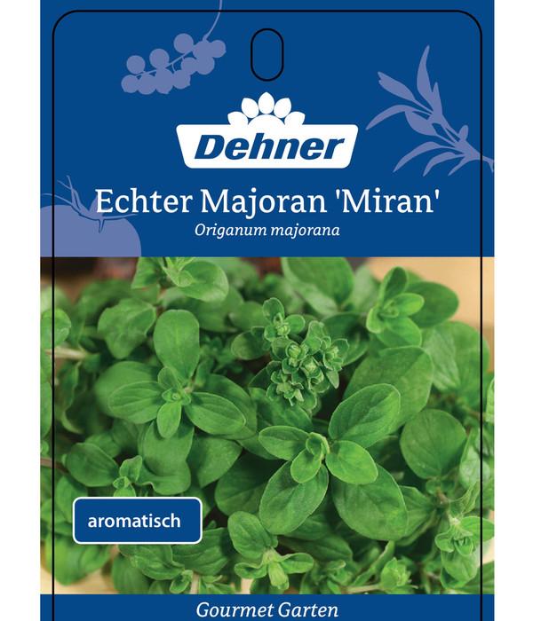 Dehner Gourmet Garten Echter Majoran 'Miran'