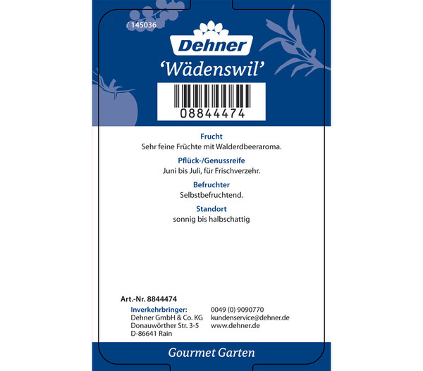 Dehner Gourmet Garten Erdbeere 'Wädenswil 6', 4er Pack