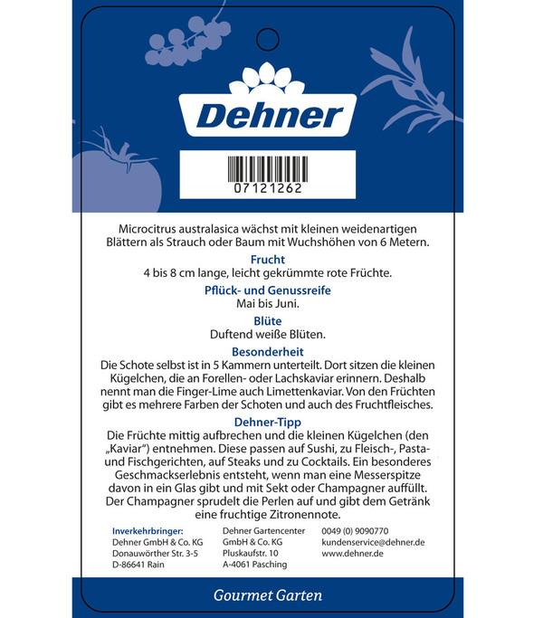 Dehner Gourmet Garten Fingerlimette