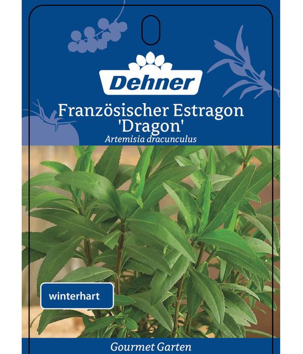 Dehner Gourmet Garten Französischer Estragon