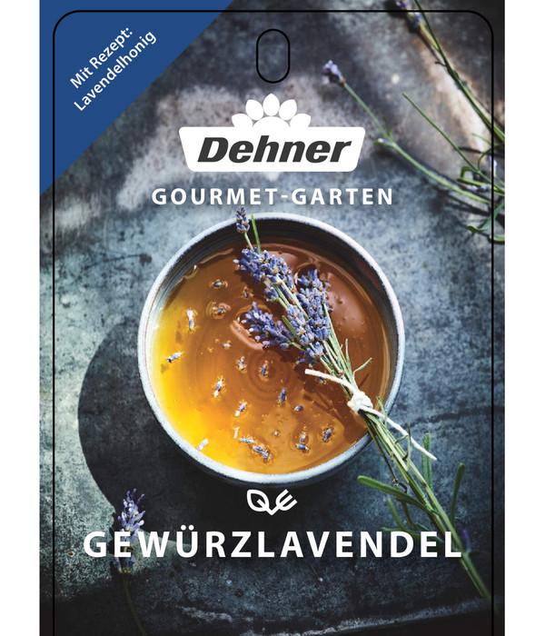 Dehner Gourmet Garten Gewürzlavendel