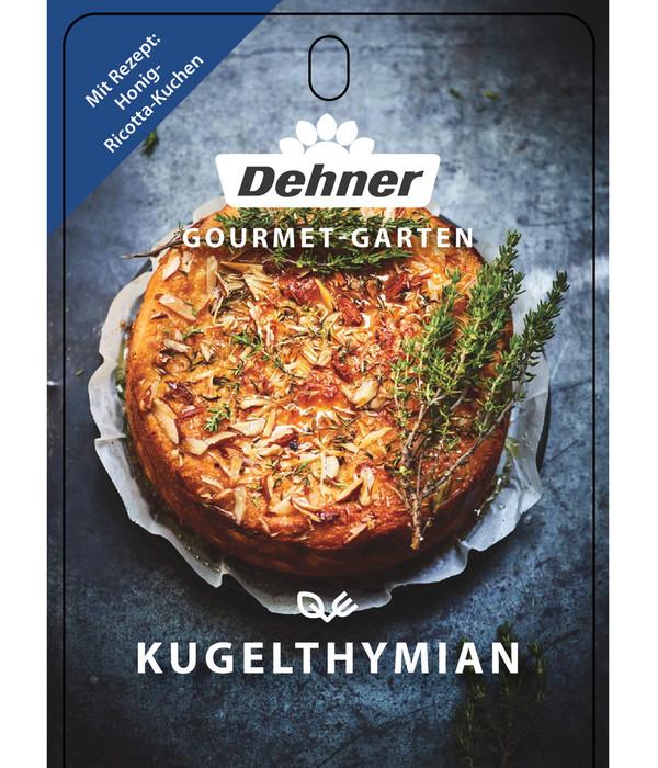 Dehner Gourmet Garten Kugelthymian