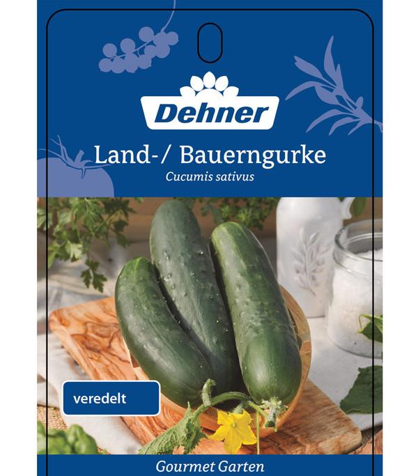 Dehner Gourmet Garten Landgurke, veredelt