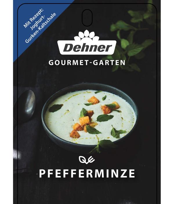 Dehner Gourmet Garten Pfefferminze