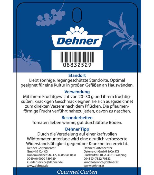 Dehner Gourmet Garten Pflaumentomate 'Dasher', veredelt