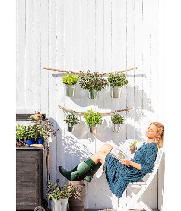 Dehner Gourmet Garten Silbersalbei
