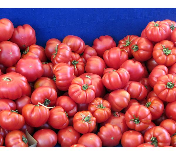 Dehner Gourmet Garten Tomate 'Buffalo Steak'