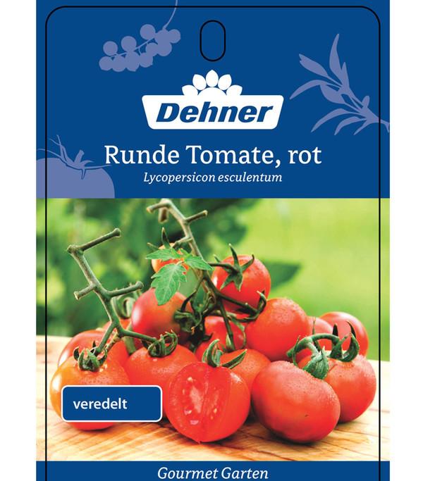 Dehner Gourmet Garten Tomate, veredelt