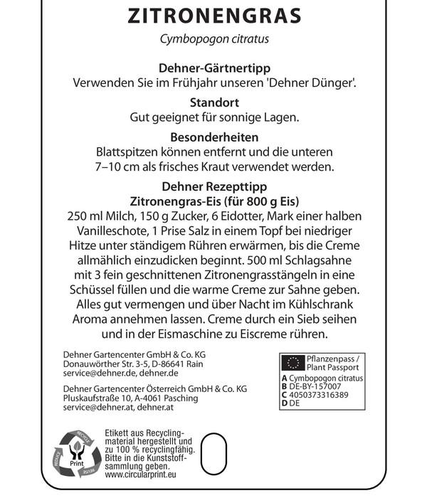 Dehner Gourmet Garten Zitronengras