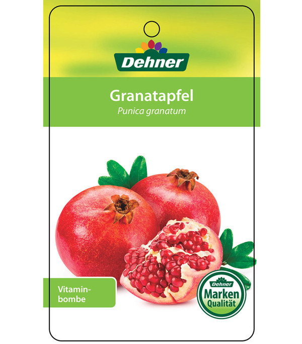 Dehner Granatapfel