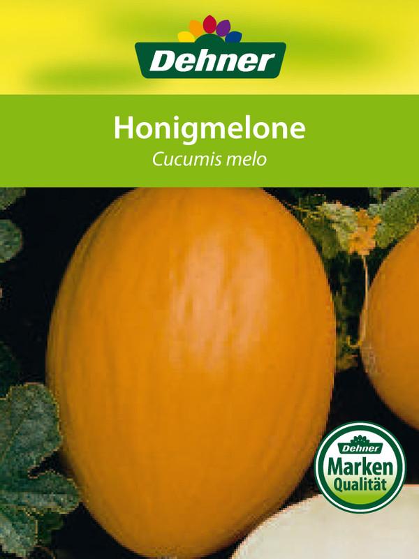 Dehner Honigmelone