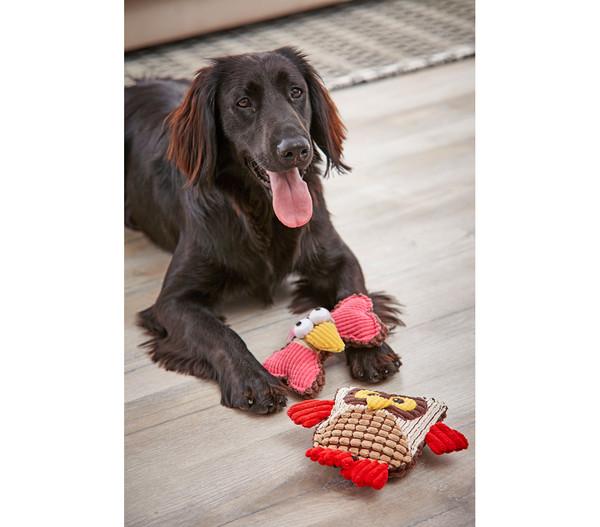 Dehner Hundespielzeug Huhu