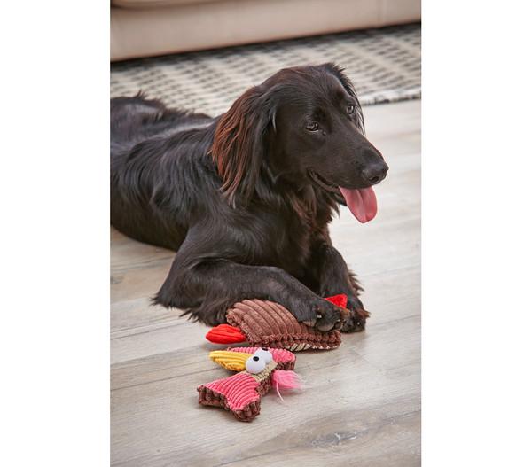 Dehner Hundespielzeug Theo