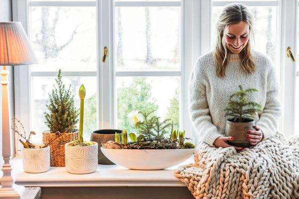 Dehner Jardiniere 'Luisa'