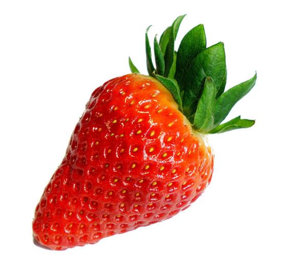 Dehner Kids Erdbeere 'Ostara', 8er Schale