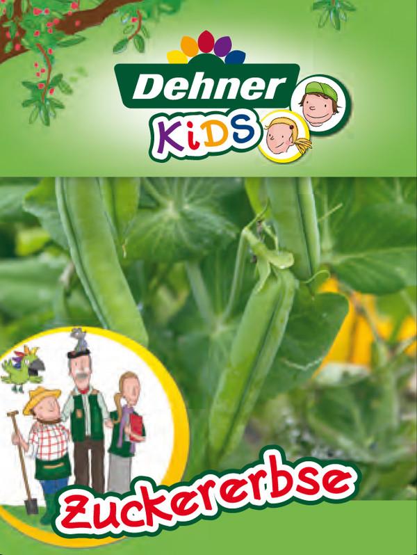 Dehner Kids Zuckererbse