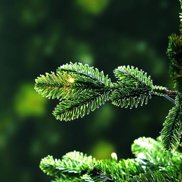 Dehner künstlicher LED-Weihnachtsbaum 'Alva', 210 cm