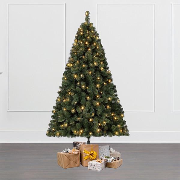 Dehner Künstlicher Weihnachtsbaum Tanne 'Aron' mit LED-Beleuchtung, 180 cm