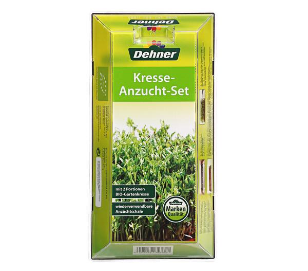 Dehner Kresse-Anzucht-Set