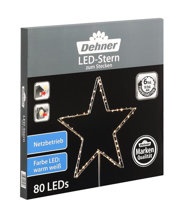 Dehner LED-Stern zum Stecken