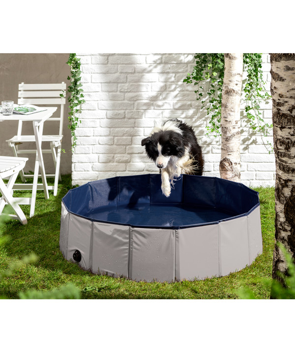Dehner Lieblinge Hundepool Water Fun