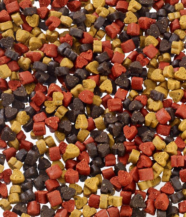Dehner Lieblinge Snack-Spaß Trainer Hearts, 500 g
