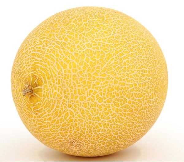 Dehner Melone 'Galia'