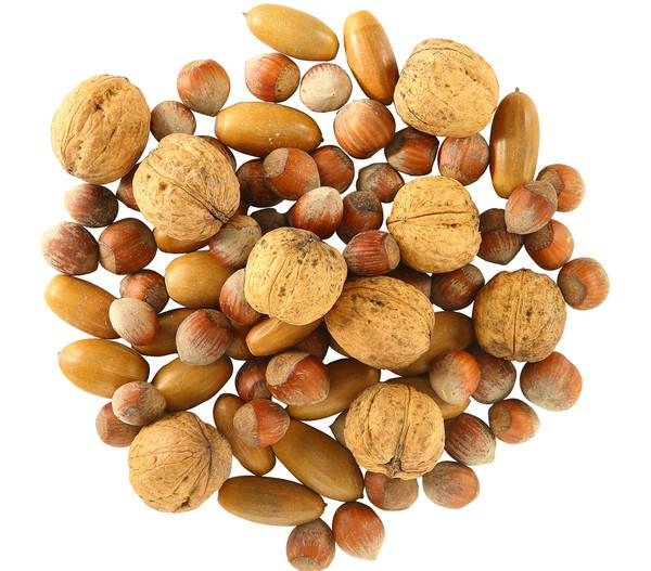 Dehner Natura Eichhörnchenfutter, Nussmix, 250 g