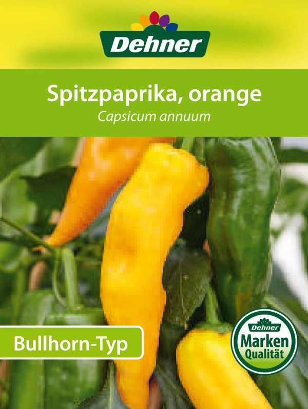Dehner Paprika 'Bullhorn', orange