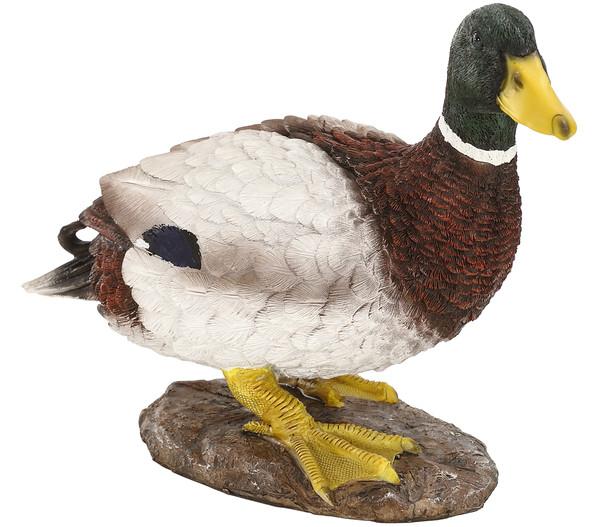 Dehner Polyresin-Ente