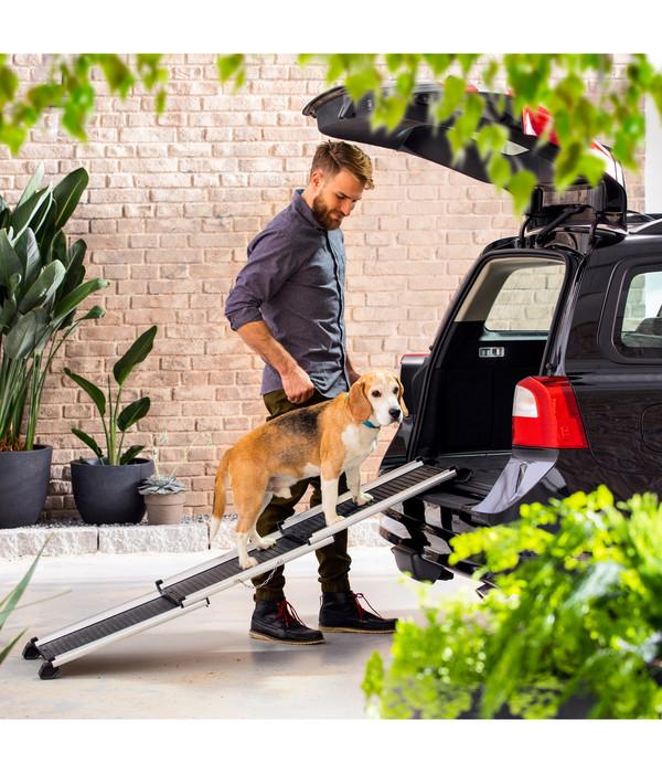 Dehner Premium Hunderampe Stairway