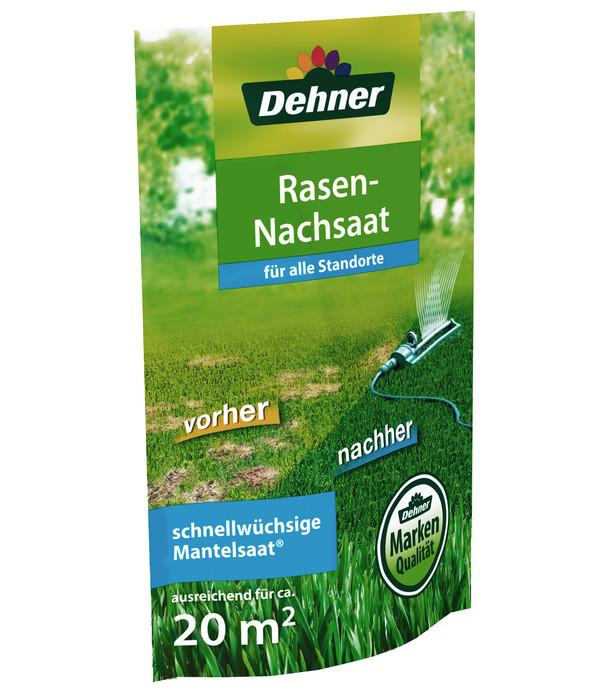 Dehner Rasennachsaat