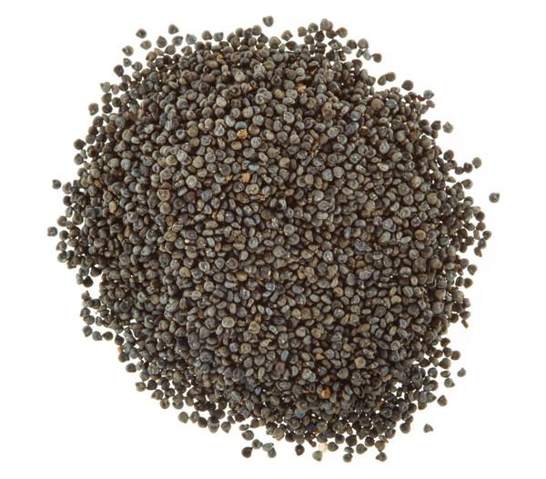 Dehner Samen Portulakröschen 'Gefüllte Prachtmischung'