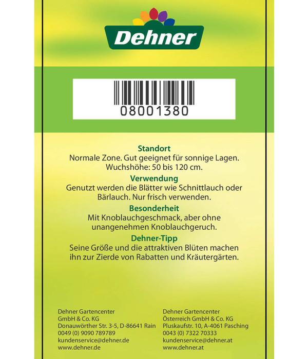 Dehner Schnittknoblauch