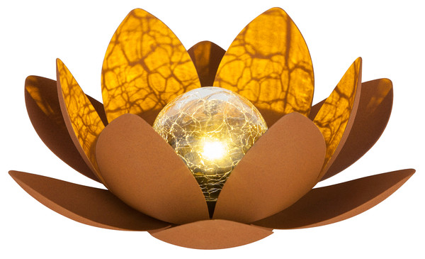 Dehner Solar-Lotus 'Rostock'
