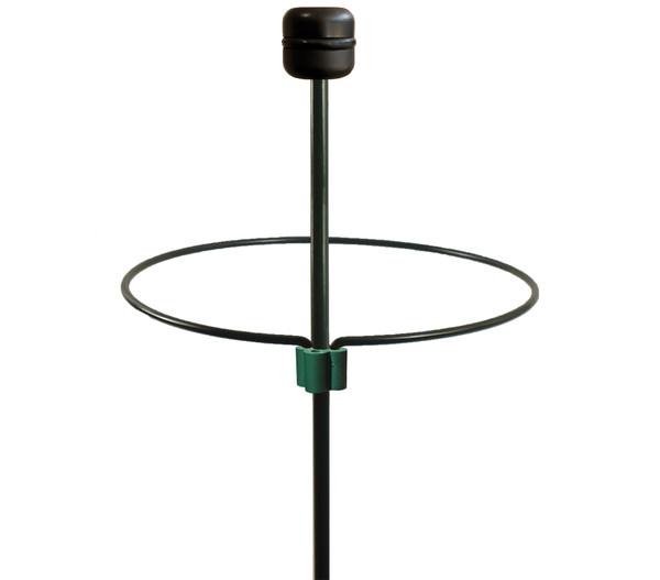 Dehner Stahl-Stützring für Pflanzen, grün