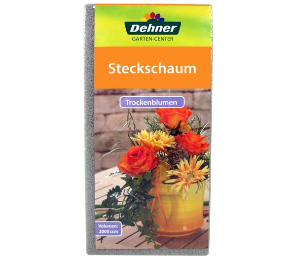 Dehner Steckschaum für Trockenblumen