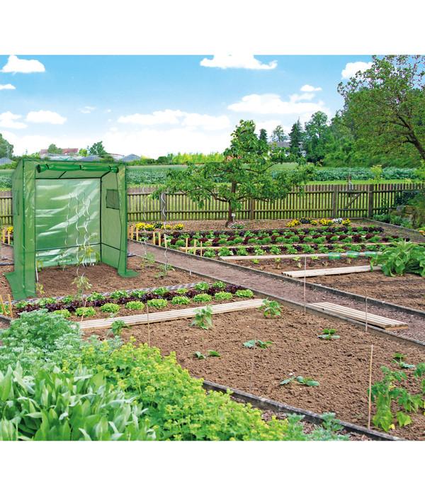 Dehner Tomatenreifehaus