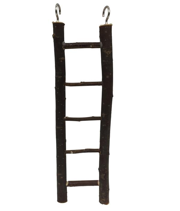 Dehner Vogel-Holzleiter Lofty, 26 cm