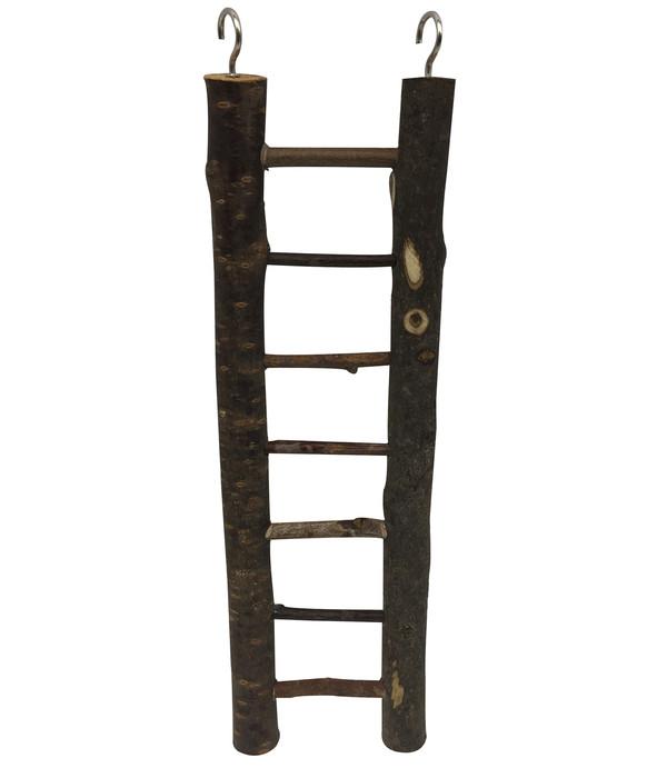 Dehner Vogel-Holzleiter Lofty, 30 cm