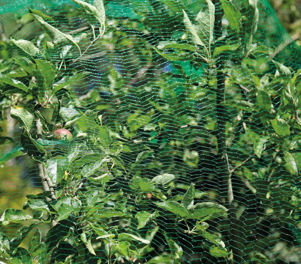 Dehner Vogelschutz-Netz, 5 x 4 m