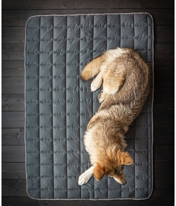 Dehner Wild Nature Hundedecke Blanket