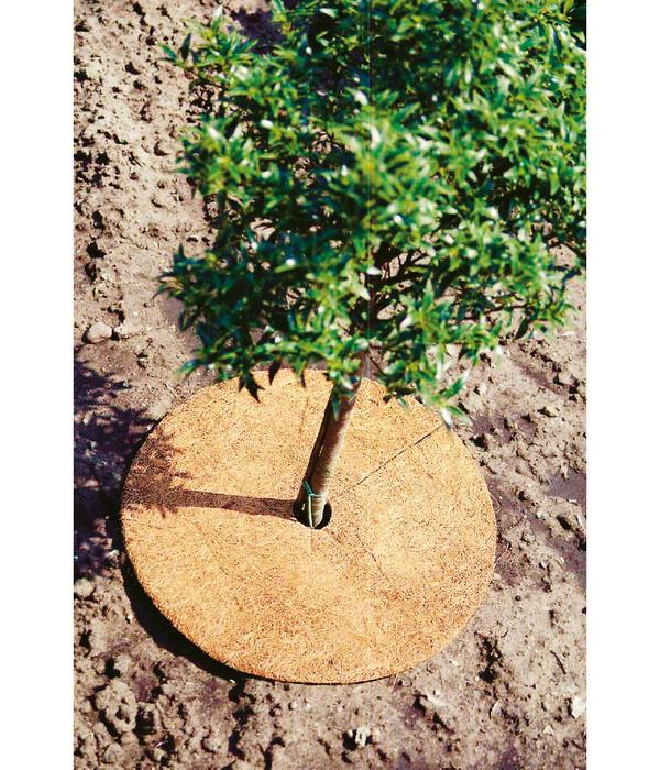 Dehner Winterschutz Kokosabdeckung für Pflanzen