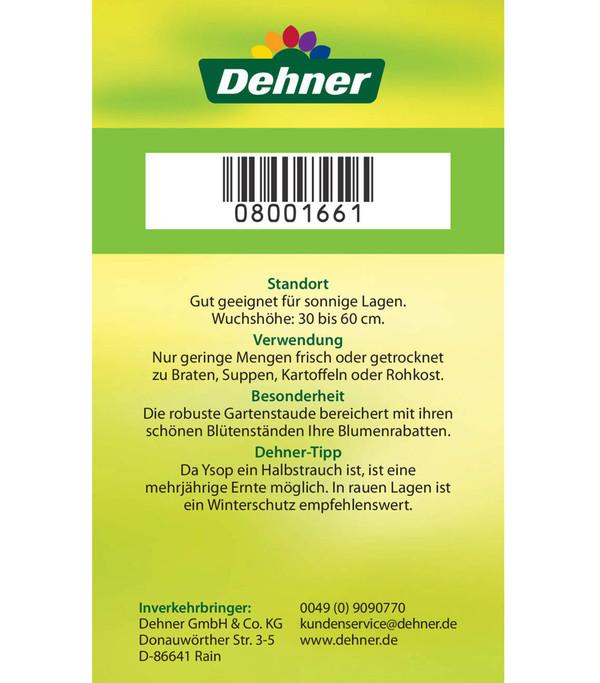 Dehner Ysop