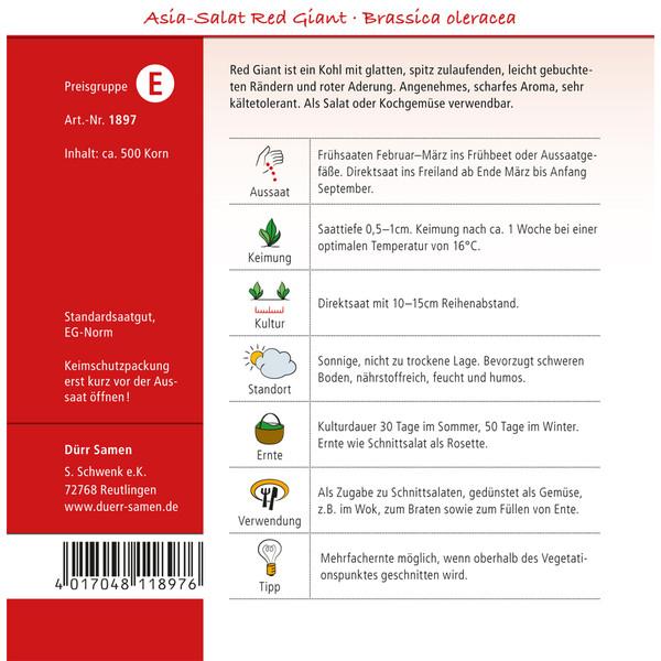 Dürr Saatgut Asia-Salat 'Red Giant'