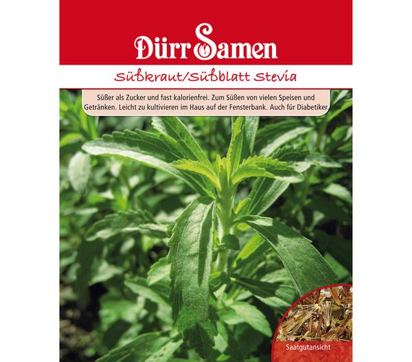 Dürr Samen Süßkraut 'Stevia'