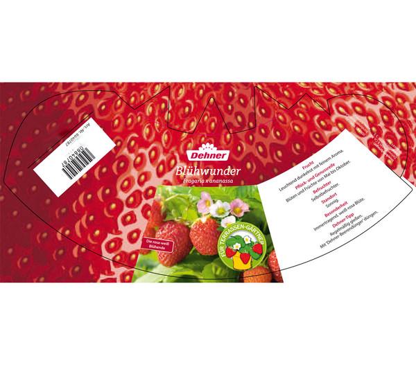 Erdbeerampel