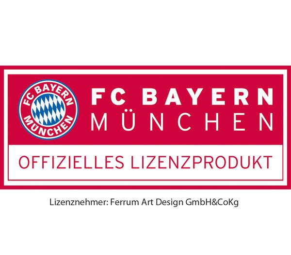 Ferrum FCB Feuerkorb Rekordmeister, eckig, 40 x 40 x 87 cm, rost