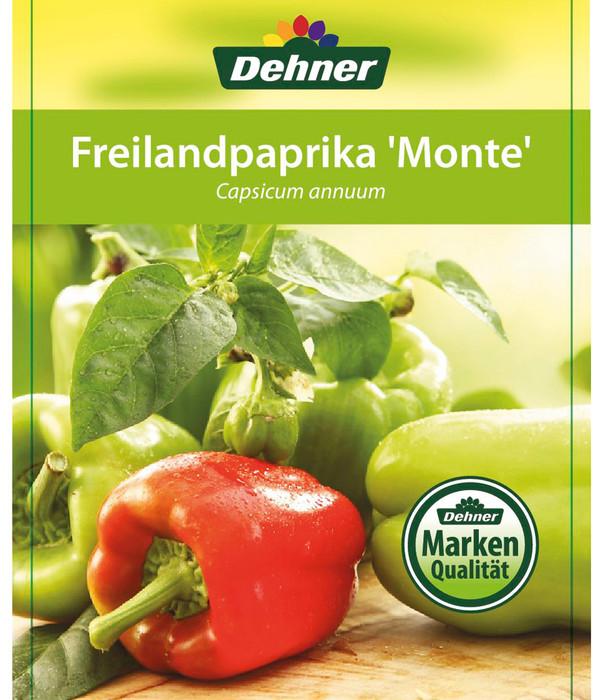 Freilandpaprika 'Monte'